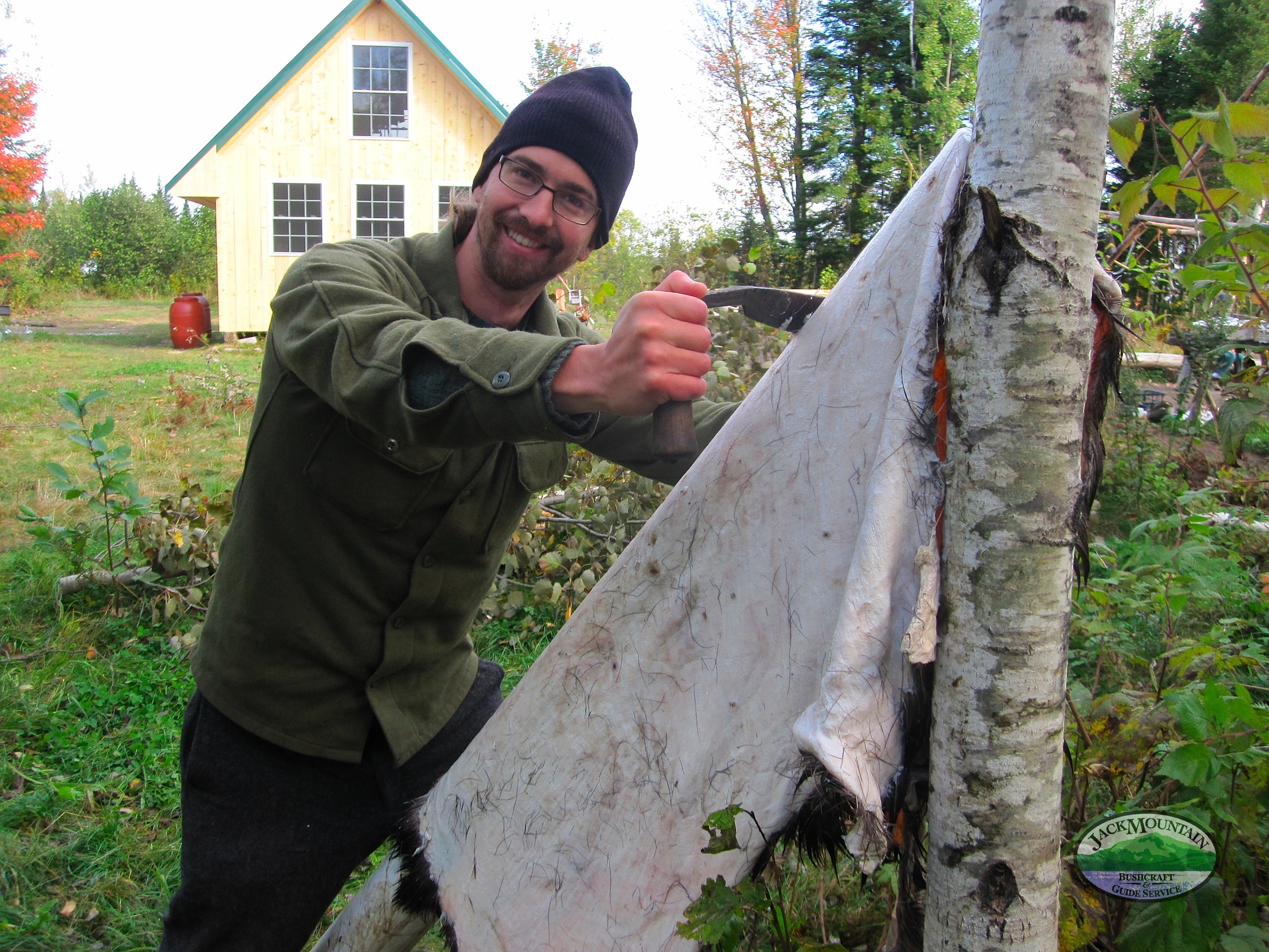 scraping-a-moose-hide